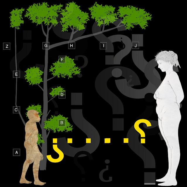 origen, Lucy , Eva, árbol