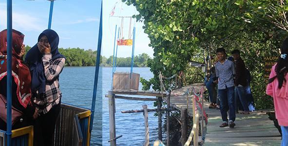 Wisata mangrove banua pangka di wotu luwu timur