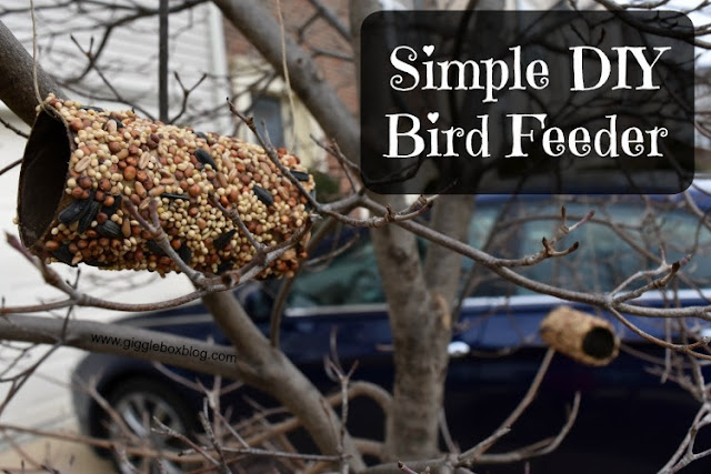 simple and fairly cheap bird feeder, bird feeder out of an empty toilet paper roll, DIY bird feeder,