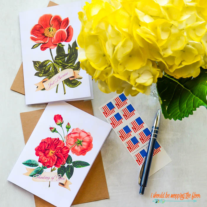 Greeting Cards for Anytime