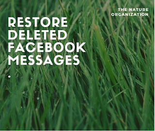 Recover Deleted Messages On Facebook Messenger