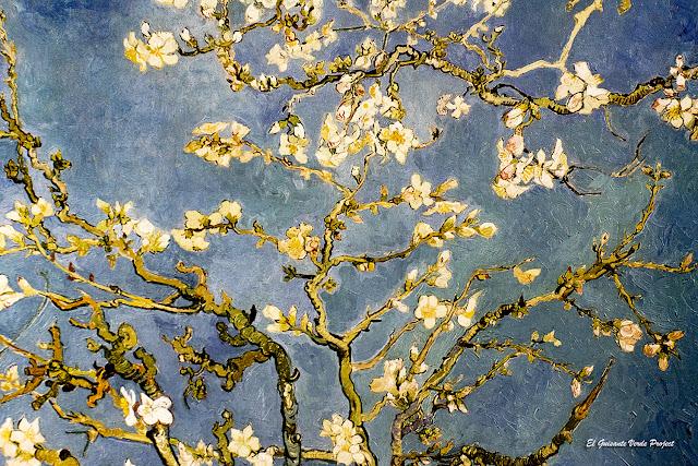 Van Gogh, Ramas de Almendro en Flor - Van Gogh Museum, Amsterdam, por El Guisante Verde Project