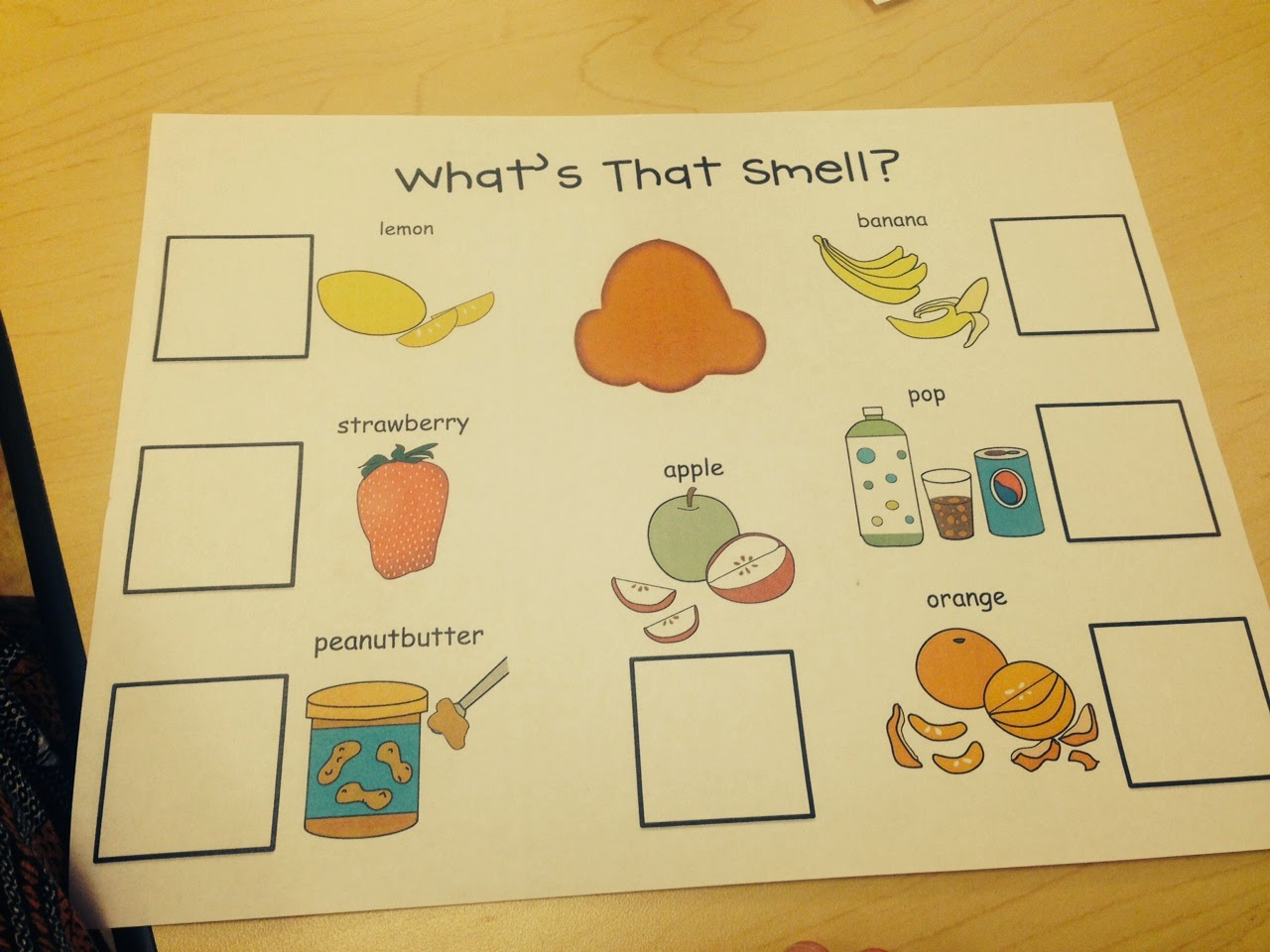 preschool wonders five senses part 2. Black Bedroom Furniture Sets. Home Design Ideas