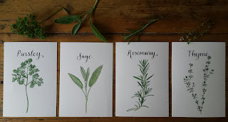 Parsley, Sage, Rosemary & Thyme :: www.AliceDrawsTheLine.co.uk