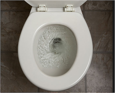10_things_your_pee_can_tell_you
