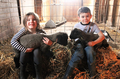 Spring on the Farm:  Farm Kid Edition - Bottle Lambs #SpringatTheisens #sponsored