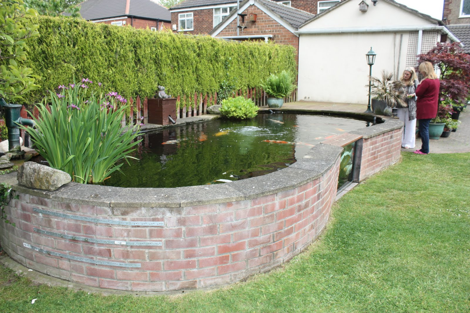 Fish pond with glass view interiors patio pinterest for Koi pond glass