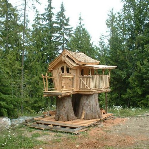Casa na Árvore - Tree House