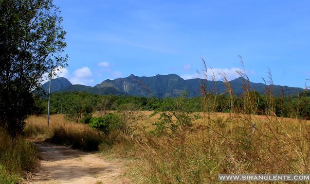Mt. Tarak
