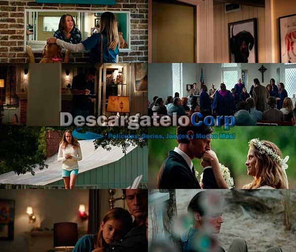 En Nombre del Amor DVDRip Latino