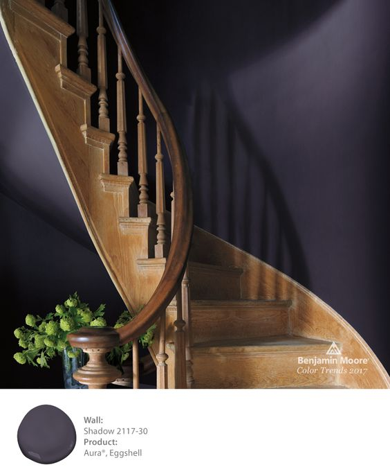 Benjamin Moore Shadow is the color of the year and one of 24 gorgeous colors in the 2017 palette