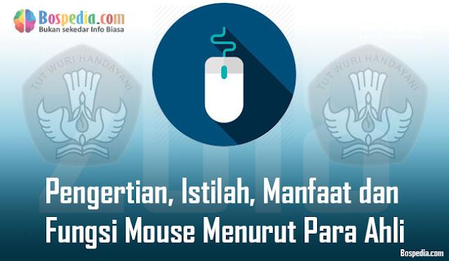 Pengertian, Istilah, Manfaat dan Fungsi Mouse Menurut Para Ahli