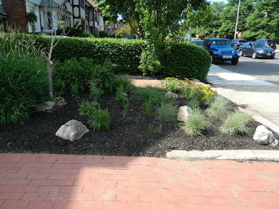 Toronto Midtown Summer Front Garden Cleanup After by Paul Jung Gardening Services Inc.--a Toronto Gardening Company