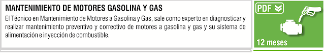 MANTENIMIENTO DE MOTORES GASOLINA Y GAS