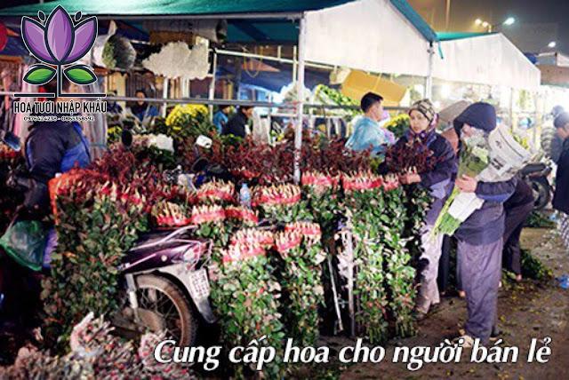 Hoa hong phan Diana B400- B350- B300\