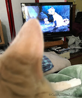 Webster watching The AristoCats