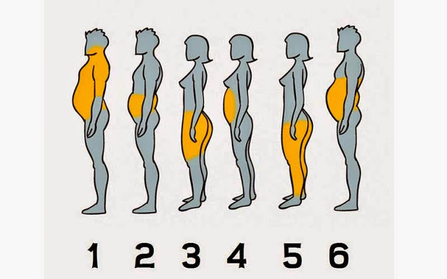 Cómo eliminar la grasa que te sobra del cuerpo