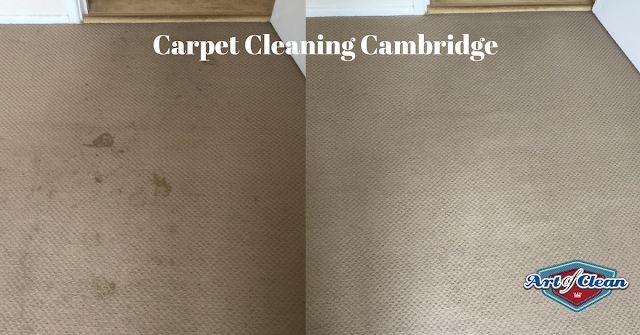 carpet cleaning in cambridge