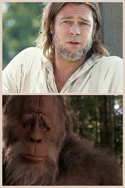 Brad pitt looks like sad monkey