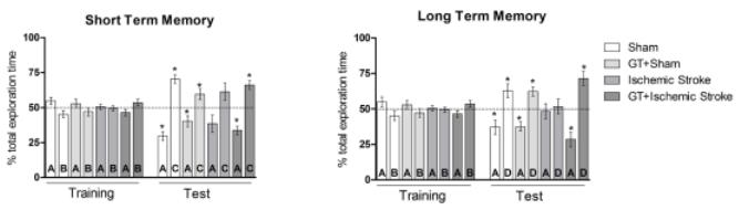 図:緑茶の脳卒中の記憶障害 改善効果