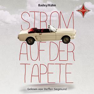 http://www.buecherwanderin.de/2017/06/lauschangriff-badey-andrea-kuhn-claudia.html