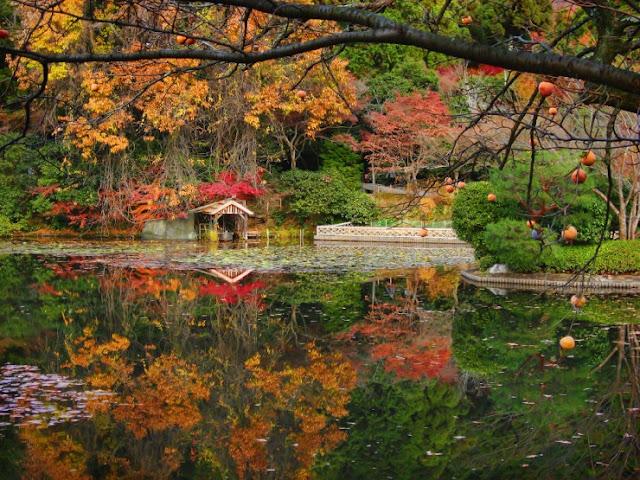Ryoan-ji Temple, Kyoto, Jepang