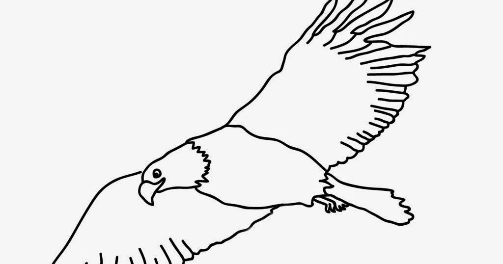 Mewarnai Burung Elang Wartisen
