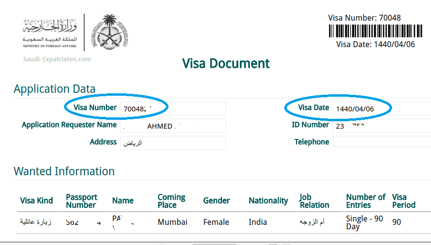 Check Family Visit Visa Approval Issuance Status