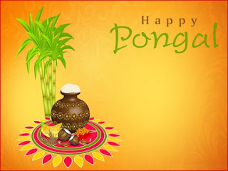 Happy Pongal Hindi Status for FB