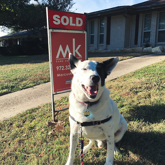 we just bought a house new homeowner housing market dfw dallas real estate