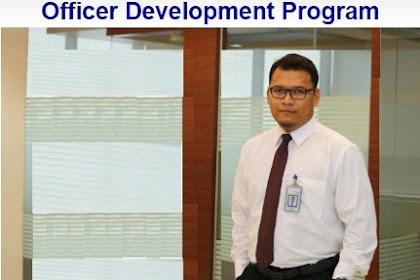 Lowongan Kerja BTN - Officer Development Program (ODP)