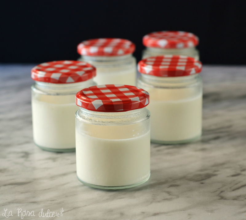 como hacer yogur natural casero sin yogurtera