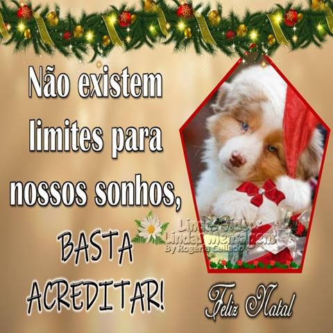 Não existem   limites para  nossos sonhos,  basta acreditar!  Feliz Natal!