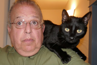 Doctor Pyewacket, the cat, looking terrified, on the shoulder of a Mitch McConnell impersonator
