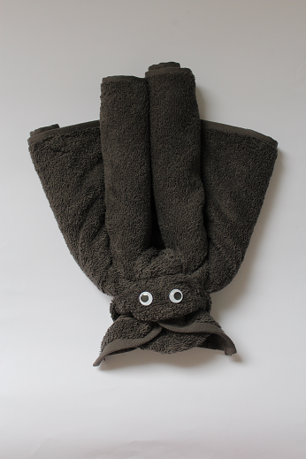 DIY-Basteltipp für eine Handtuch-Origami-Fledermaus von Ars Vera.