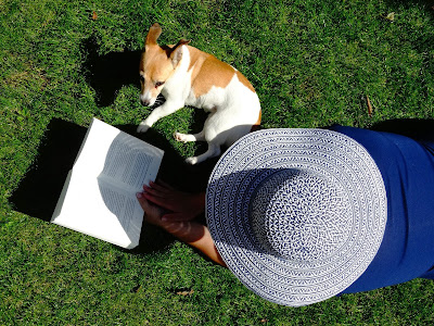Pas u travi Panvet