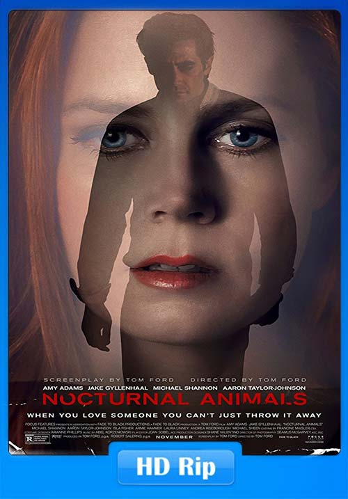 Nocturnal Animals 2016 720p BDRip Hindi Eng X264 | 480p 300MB | 100MB HEVC
