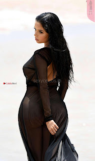 Demi-Rose-Pictureshoot-on-a-Beach--07+%7E+SexyCelebs.in+Exclusive.jpg