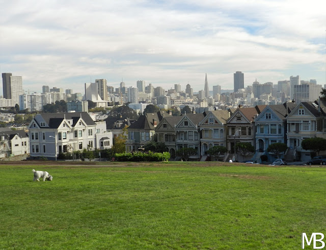 painted ladies alamo square san francisco california