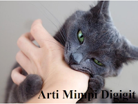 8 Arti Mimpi Digigit Kucing Menurut Mitos Masyarakat Jawa