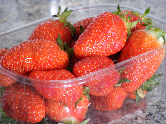 Gariguette strawberries. Indre et Loire. France. Photo by Loire Valley Time Travel.