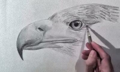 تعلم الرسم