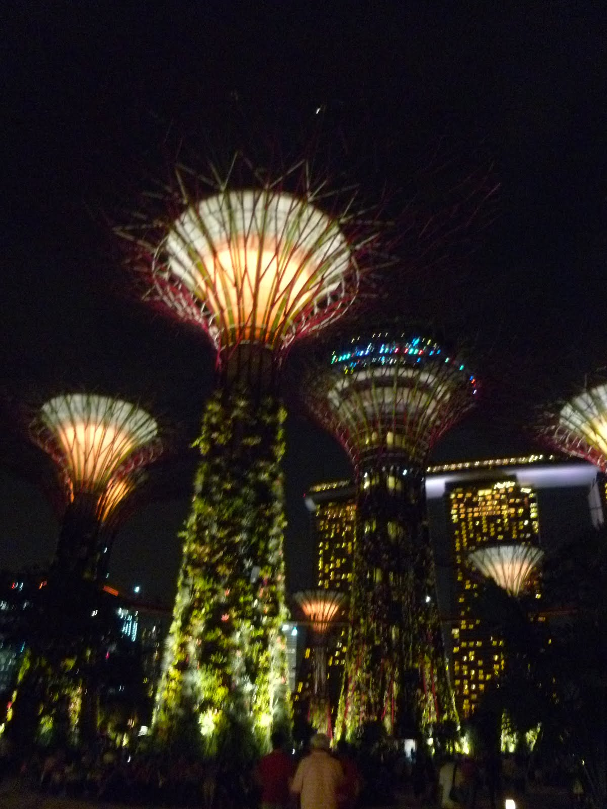 swinging by supertrees by night gardens by the bay singapore - Garden By The Bay At Night