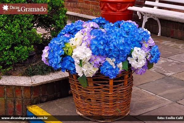 Vaso de flores em Gramado/RS