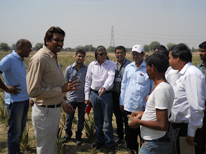 ORGANIC CULTIVATION TRAINING PROGRAM