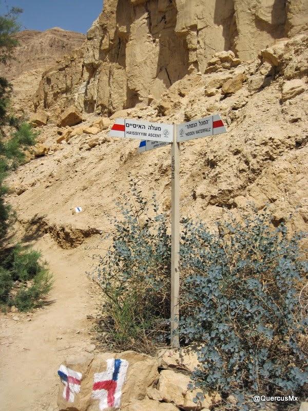 Senderismo puro en Wadi Arugot, Israel