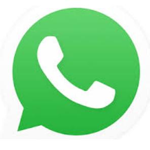whatsapp 2019 plus