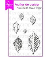 http://www.4enscrap.com/fr/les-matrices-de-coupe/687-feuilles-de-cerisiers-4002031601917.html?search_query=feuilles+de+cerisiers&results=1