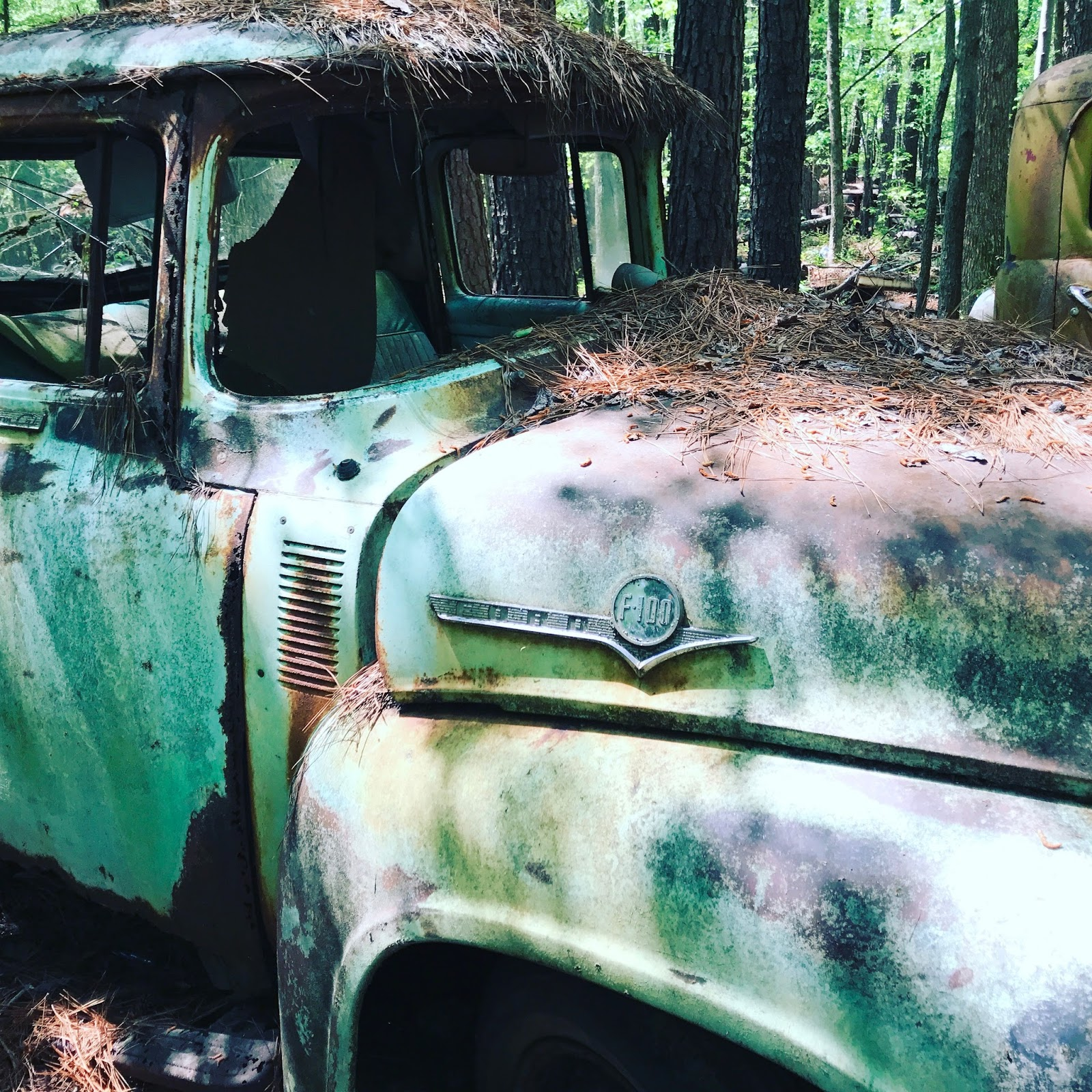 Weird, Wacky and Wild South: Car graveyard\'s more like it at ...
