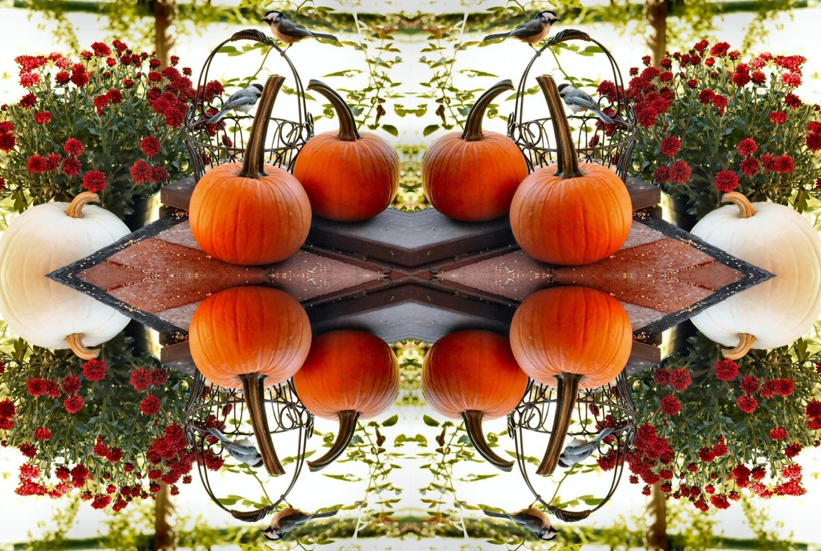 fun fall wallpaper - photo #24